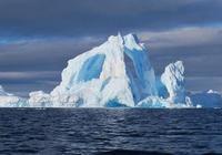 極地海怪傳說――巨槍烏賊