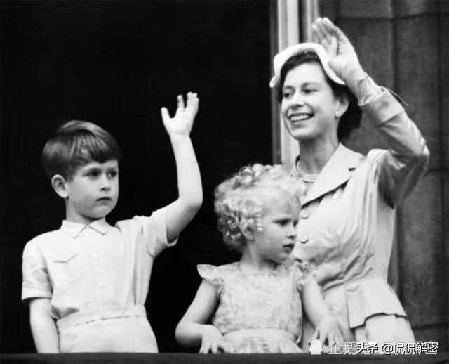 英國安妮公主遺傳到父母的高顏值?一組老照片見證玄機
