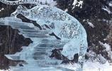 夏日清涼,美麗的冰雕藝術,冰爽一下
