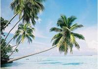 海南當地人都未必知道的小眾海島天堂