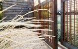 住宅設計:用仙人掌和碎石鋪裝打造絕美生態庭院的清水混凝土別墅