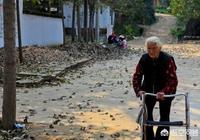 老人八十多了,不願意去養老院不願意僱人伺候,只願意自己的兒子伺候怎麼辦?