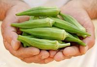 秋葵的營養價值有哪些 秋葵的食用方法