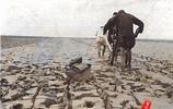 河南焦作:1938年懷慶府焦作(含沁陽縣)的風景人物