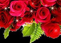 今天10月14號,世界姐妹日,祝福送上,快打開看看!