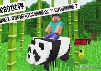 我的世界:中國版剛更新,熊貓就成為了坐騎?3種方法你會麼!