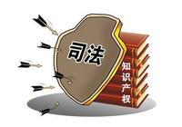 知識產權日:上海公佈2016年知識產權十大案件