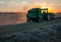農業持久戰:農業大商業模式分析