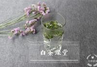 夏天喝白茶,春壽眉為什麼成為首選?看到第三個理由,說服了我