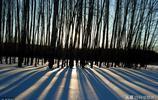 內蒙古祕境之旅:讓呼倫貝爾的冬天,成為不忘的遠方