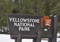 美國黃石國家公園深度遊玩介紹