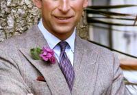 伊麗莎白女王,直接把王位讓給威廉王子,查爾斯和卡米拉能接受嗎