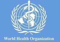 世界衛生組織是幹什麼的?