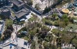 清明假期首日西安上萬人青龍寺賞櫻 遊客排隊百餘米長