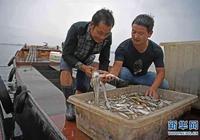 鄱陽湖漁民上岸記