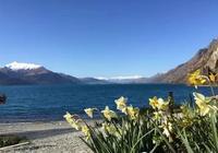 新西蘭海洋環境保護碩士簡介