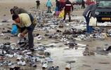 這個沙灘吸引了不少人來尋寶,很多人撿到寶貝