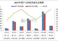 唐曉霄:玉米拍賣投放量大增 市場靜觀其變