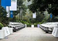"""海外銷量跌10%,僅國內銷量微增,現代汽車遭遇""""黑六月"""""""