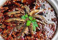 水泥池養泥鰍效果如何,泥鰍養殖前景怎樣?