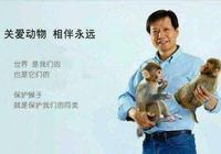 雷軍不再耍猴,小米金融放貸100億,搶奪阿里騰訊市場!