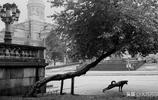 世界攝影大師的代表作品,經典黑白攝影100張(六)