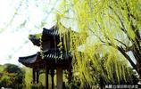 除了紅色,這應該是古代中國人最愛的色彩(一)