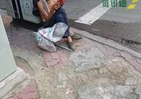 石家莊一拾荒老人在垃圾桶旁席地而坐,翻看《新華字典》