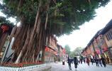探訪福州三坊七巷,看看這裡有啥不同?多了文化定位少了吆喝商販