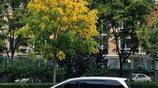 賞秋——深秋的北京,京東山里的美景
