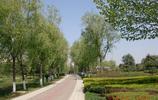 寶雞渭河公園