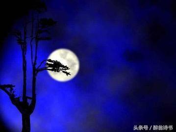 《七絕 · 初秋夜》文/陳忠雄