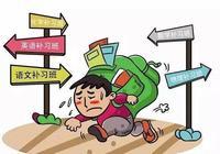 有多少高考成績好的人,是因為上了大量課外補習班?
