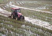 南方農民水田作業,離不了這款四驅微耕機,就是比兩驅好用