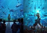 盤點《海王》裡佔據看點,負責增加電影體量感的大型海洋生物