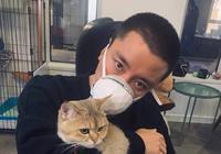 一張擼貓照片暴露兩人關係,金童玉女重歸於好?