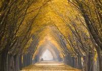 健康度假,專家肖建告訴你秋冬季節如何防治呼吸道疾病