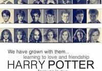 我曾是哈利·波特,但現在我在哈姆雷特手下領便當