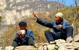 太行深山一個人少的地方,滿樹的柿子、遍地的甜梨,人們免費吃行