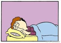 加菲貓漫畫|想告訴全天下的鏟屎官們,你們的付出,其實,我們懂