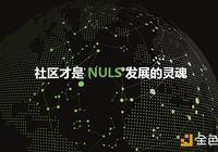 社區的強大才能保證NULS的持久強大-NULS逐步進入社區自治的必要與實施步驟