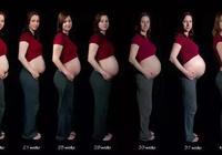 想懷孕看這裡!分享快孕訣竅,讓寶寶早點來!