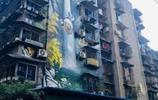 """成都,一座來了就要""""靠牆站""""的城市,真的有功夫熊貓"""