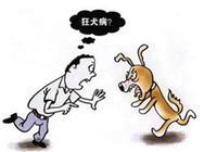 狂犬病發作是一種什麼感覺?