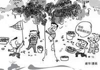 """莆田這5人偷摘枇杷兩百斤,嘴饞""""吃""""進拘留所"""