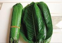 在農村包粽子,這些粽葉變成搶手貨,第五種我猜你沒見過
