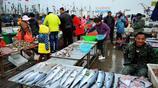 碼頭上蠣蝦一斤18元 青島人吃不膩的小海鮮