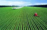 世界最發達國家農村真實百態,機械化程度高,年輕人不願意從事農業!