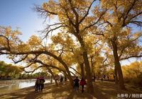 漫步在神話般的最純粹秋色中