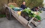 佛坪88歲爺爺早市賣菜,每天要拉著架子車走5華里,家裡條件不錯